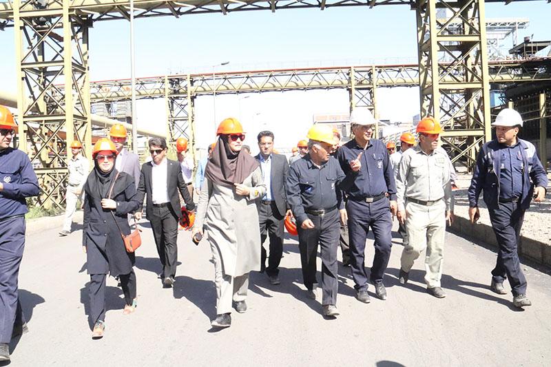 جلسه دورهای شورای اداری محیط زیست استان کرمان در مجتمع ککسازی شرکت فولاد زرند ایرانیان تشکیل شد.